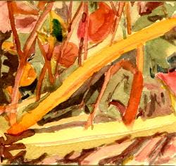 2009, Aquarell, 11,5x12,5 cm