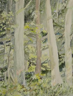 2009, 56 x 43 cm, Aquarell
